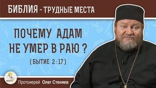 Почему Адам не умер в раю (Бытие 2:17)?  Протоиерей Олег Стеняев. Толкование Ветхого Завета