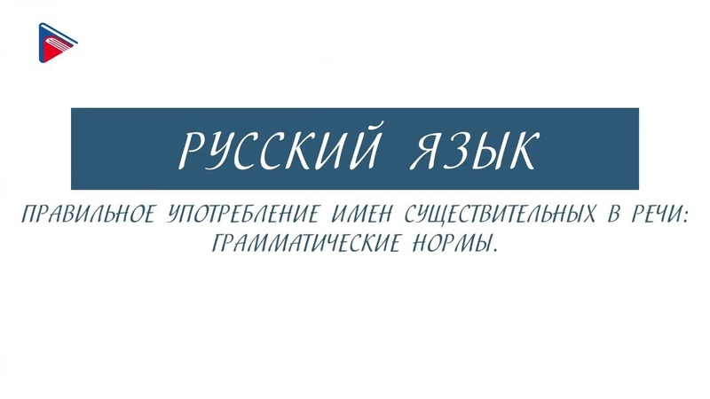 6 класс Русский язык Правильное употребление имён существительных в речи грамматические нормы