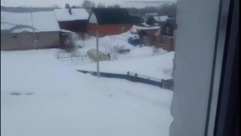 сосед кидает снег