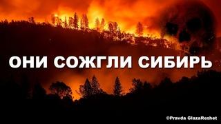 Лесные пожары устроили... Они сожгли Сибирь - это геноцид | Pravda GlazaRezhet