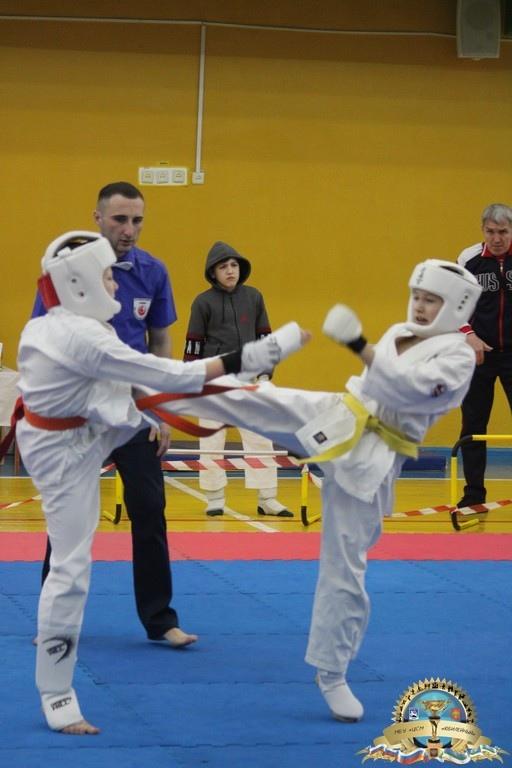 В Воркуте состоялся Кубок Республики Коми «Шахтерская слава» по киокусинкай, изображение №7
