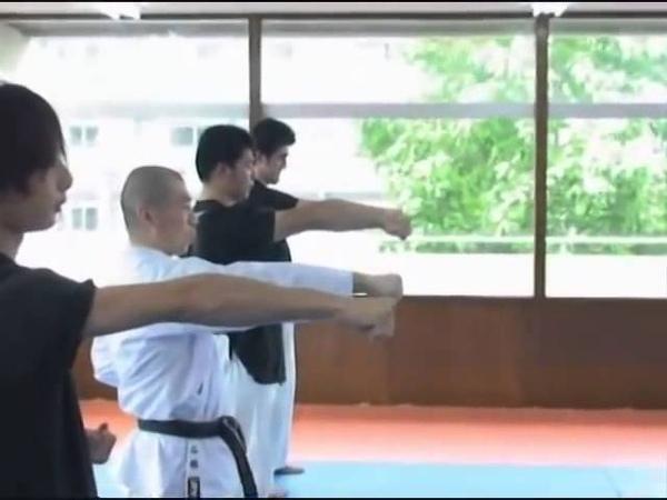 Naka Tatsuya explain correct Zuki form