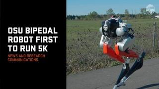 OSU Bipedal Robot First to Run 5K