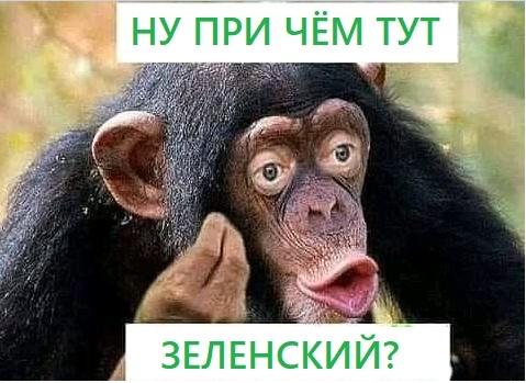 Щодня стає дедалі гірше. Наш уряд годує нас обіцянками, - громадяни України, які чекають евакуації з Уханя, записали звернення - Цензор.НЕТ 3518