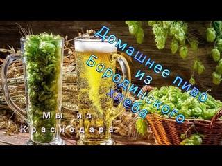 """Домашнее пиво из Бородинского хлеба по рецепту """"Свой среди своих"""" от канала Мы из Краснодара"""
