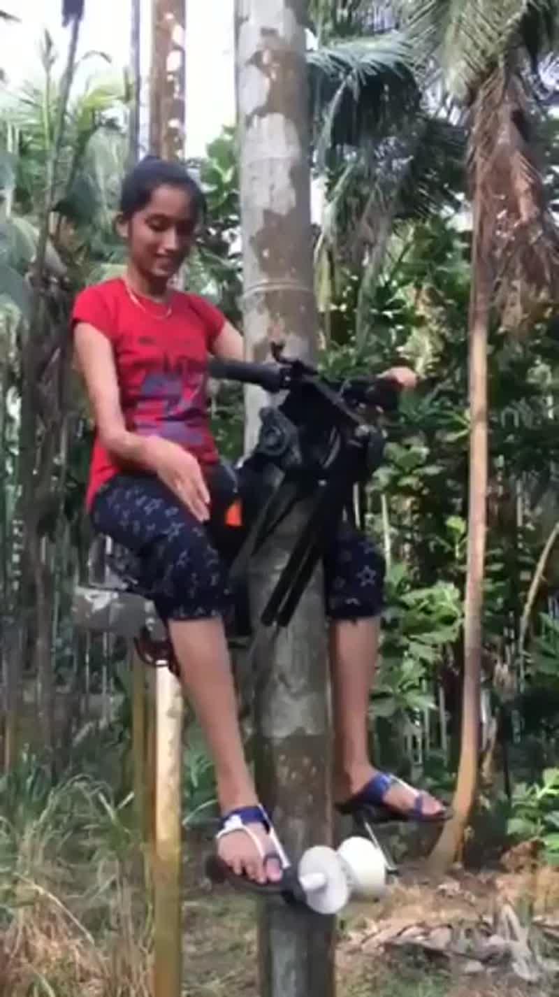 Фермер из Индии придумал машину для лазания по деревьям