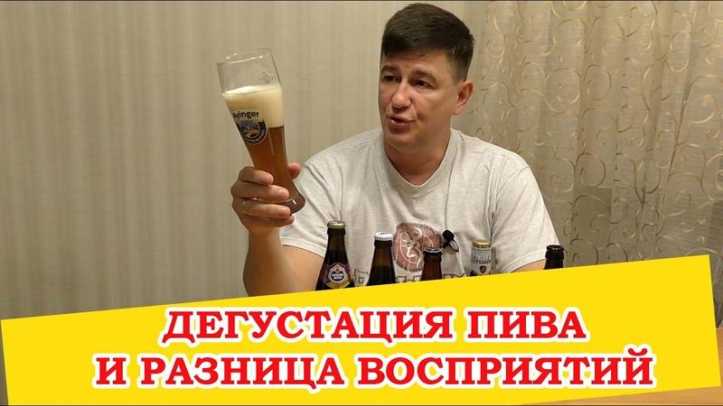 Дегустация пива и разница восприятий