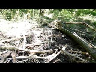 Славянск, о томк как стреляет украинская армия: посадка на мк. Артема 1