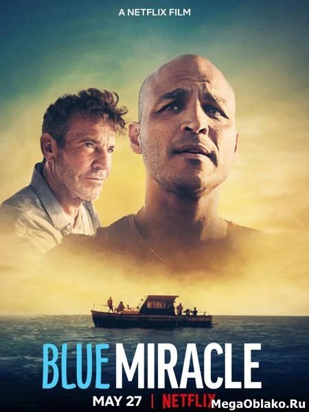 Чудо в океане / Blue Miracle (2021/WEB-DL/WEB-DLRip)