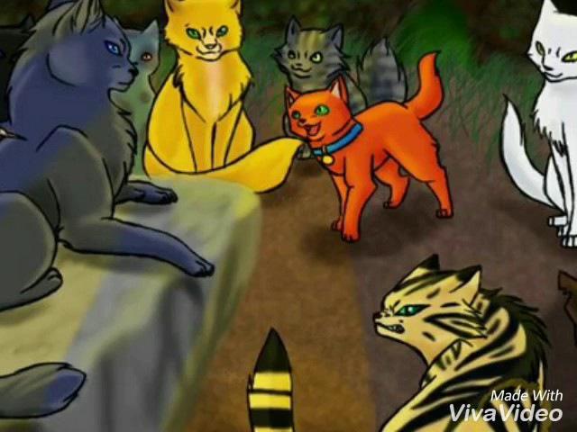 Коты Воители Смерть Огнезвезда