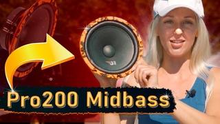 ЖИРНЫЙ МИДБАСС за 3390р! DL Audio Gryphon Pro 200 Midbass