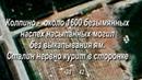 Груз 200 Донбасс — Колпино.