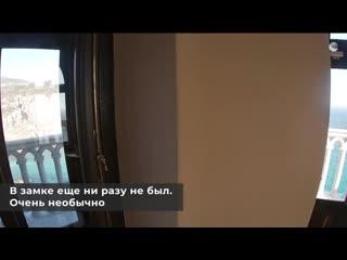 Два символа Крыма Кот Мостик в Ласточкином гнезде