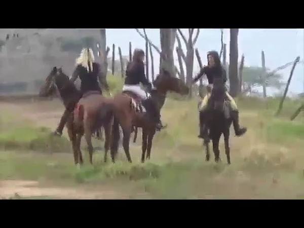Ponyboy John Kelly