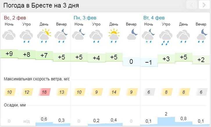 Оранжевый уровень опасности объявлен в Беларуси 3 февраля из-за сильного ветра