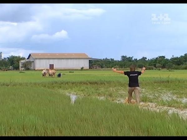 Красные кхмеры Мир наизнанку Камбоджа 1 сезон 7 серия Архив 2010 года