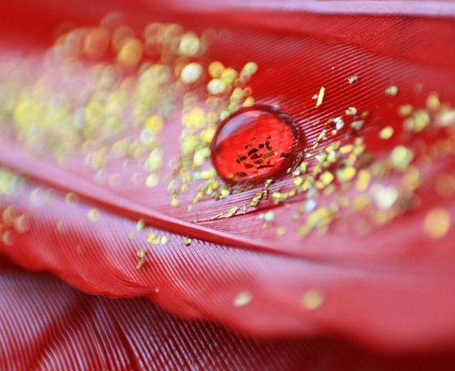 Золотая кровь. Всего 11 человек в мире имеют эту редкую группу крови, один живет в России