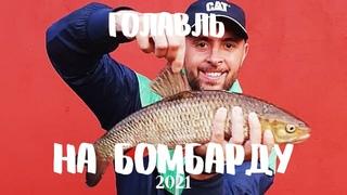 Рыбалка на мушку бомбардой (сбирулино) на реке Нарова.