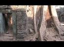 Tа Prohm temple Cambodia