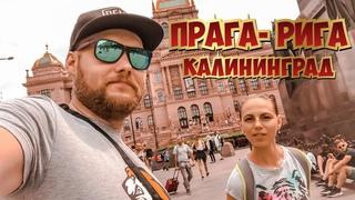 Только для своих : В Европу на Патруле ч2 : Рига, Калининград, Прага.. Хаски типо пивной Блоггер =)