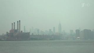 ВСША дым отприродных пожаров дотянулся доНью-Йорка. Новости. Первый канал