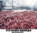 Личный фотоальбом Алексея Керудосова