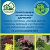 Цветочная Дармарка   Садовый Фримаркет