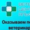 АЛЬФА-ВЕТ Ветеринарный центр в Самаре