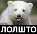 Фотоальбом Фёдора Обухова