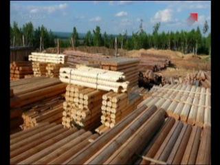Строим сруб деревянного дома из уст професионала