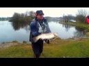 Трофейная форель 6 кг. Для тех кто любит рыбалку - рыбалка на севере.