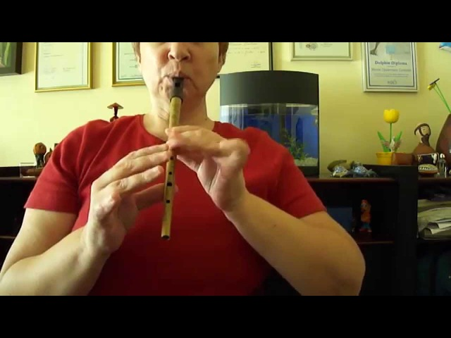 The Clarke´s MEG Tinwhistle in D playing `The Battering Ram´ Irish Tune