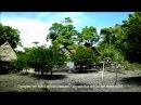 ВЕЧНОЕ ЛЕТО Робинзоны на острове Най 2013 Мой первый фильм