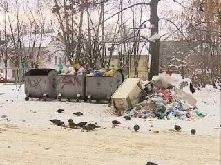 Два района Ярославля отказываются от услуг «Спецавтохозяйства» по вывозу мусора