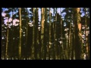 Бесконечность / Infinitas (1991)