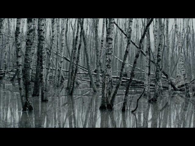 Eivør Undo Your Mind Official Video