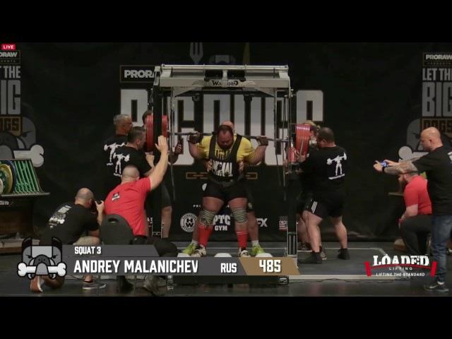 Andrey Malanichev 485kg 1070 lbs Squat WR @ Big Dogs 2016