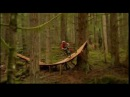 If Only Every Mountain Biking Video Was Shot Like This -
