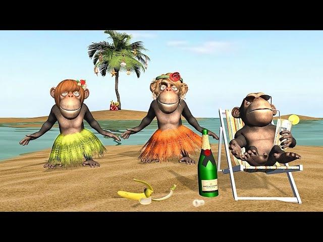 Полгодика, приколы с обезьянами открытки