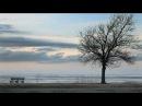 Marissa Nadler Rosary Official Video
