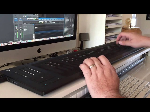 Roli Seboard rise 49 Impact Soundworks Archtop Hollowbody Electric Guitar