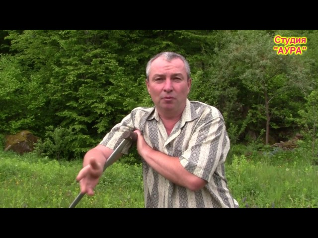 Как прожить на 2500 рублей в месяц Жизнь в деревне Деревня или город