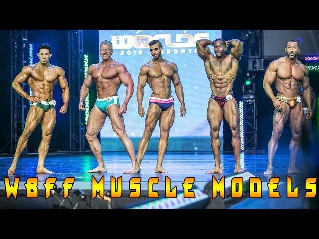 Никита Комаров Что такое WBFF Pro Muscle Models