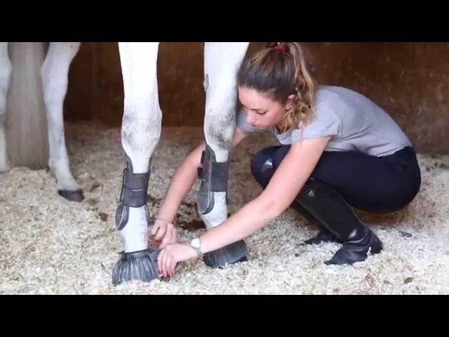 Tattini Equestrian Passion and Lifestyle made in Italy since 1860