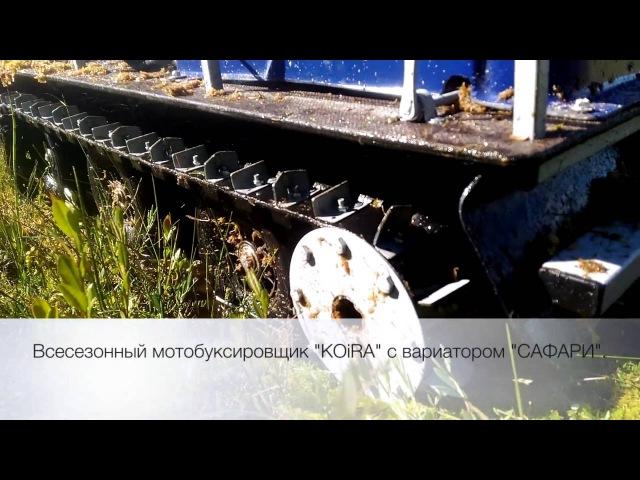 Мотобуксировщик КОЙРА езда по болоту на прицепе и волокушах