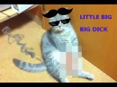 Пародия на клип - LITTLE BIG BIG DICK