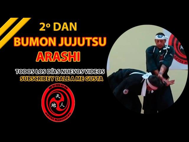 2º Dan jujutsu Arashi Tenshin ryu Bumon ninpo