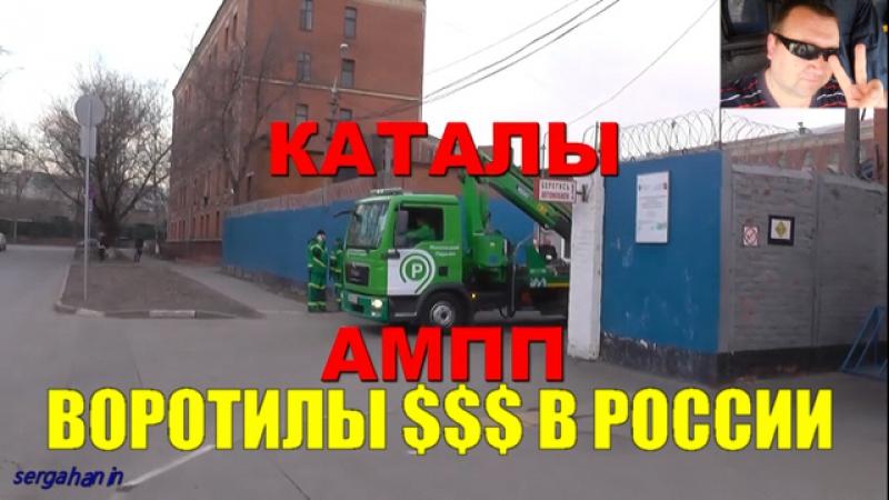 Воротилы ПДД в России