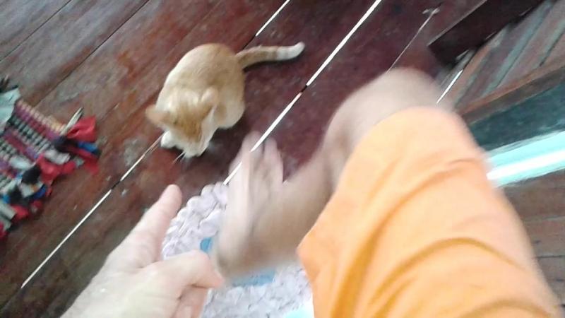 моя первая победа в беЗконтактном бою с тайским мастером Рыжи Ку Су Пу Тю