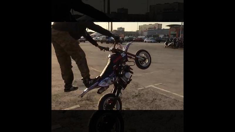 Stunt FanDay